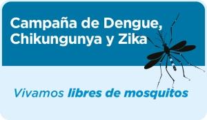 13-01-16-dengue